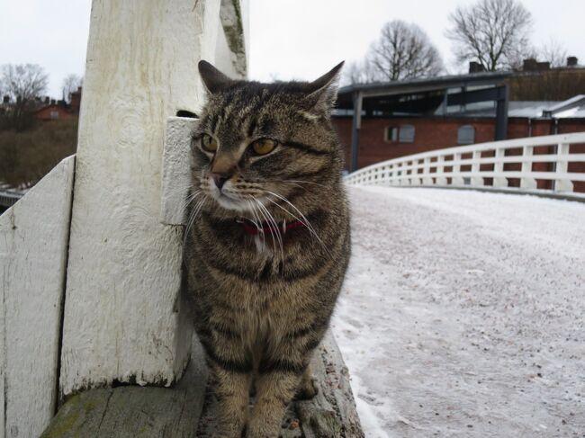 フィンランド8日間の旅7日目【スオメリンナ島、ヘルシンキ編】<br />急遽行くことに決めた、<br />スオメリンナ島。<br />寒空の下で会ったのは猫ちゃん!<br />行った甲斐ありの、<br />ヘルシンキの能古島。。。<br /><br />-----------------------------------------<br /><br />ご覧いただきありがとうございます。<br />旅とネコを愛するゆーぢよと申します。<br /><br />★旅先★<br />フィンランド:ヘルシンキ・ロバニエミ<br />エストニア:タリン<br /><br />★旅の目的★<br />雑貨探訪&amp;オーロラを見る!<br /><br />★目的地までの手段★<br />飛行機:日本航空<br /><br />★ゆーぢよ構成員★<br />オットゆんゅ(´・ω・`)<br />ツマちっち(・∀・)<br /><br />-----------------------------------------