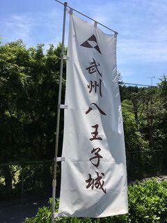 西東京バスで攻める日本100名城  《八王子城》