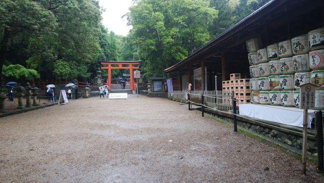 ゴールデンウィーク恒例の京都、大阪での行事終了後、午後京都を、延泊して奈良を徘徊した。京都は阪急嵐山線と嵐電本線界隈を、奈良は法隆寺、浄瑠璃寺、春日大社、元興寺を訪れた。<br />[行程概略]<br />5/6(日)PM2時頃モノレールから阪急京都線への乗換駅、南茨木で「京都嵐山1dayパス」(\1,300)を購入し、河原町行きに乗車。この1dayパスは阪急全線、嵐電全線、京都バス嵐山地区で使用可能。大阪泊にしているため大阪まで戻る運賃を考慮して購入。<br /> 桂で嵐山線に乗換え、松尾大社駅で下車。改札の目の前にある大鳥居をくぐり、松尾大社へ。<br /> 参拝後、徒歩で鈴虫寺へ。住宅街を抜け、途中、月読神社にお参りして15分程度で到着。山門入口に行列があり待ち時間不明のため、参拝をあきらめ松尾大社駅へ徒歩で戻り、一駅先の終点嵐山まで乗車。徒歩数分の法輪寺へ。<br /> 十三参りの子らを見ながら参拝した後、渡月橋を渡り、嵐電嵐山駅より鹿王院駅へ。鹿王院まで数分歩く。<br /> 参拝見学後、徒歩で車折神社へ。参拝後、車折神社駅から蚕ノ社駅まで嵐電に乗車。広隆寺弥勒菩薩を拝みに行きたかったが、何度かお参りしていたこともあり、更に雨が降りそうになって来、時間も遅くなったので、太秦広隆寺で降りるのはやめた。<br /> 蚕ノ社駅から雨が落ちてきた中、木嶋神社へ歩く。参拝後蚕ノ社駅から終点四条大宮へ。阪急に乗換え、烏丸で下車、用事を済ませ、新京極へ行き夕食。夕食後河原町駅から梅田行き特急で大阪へ。<br />5/7(月)日本橋から地下鉄で天王寺へ行き、8:52発のJR大和路快速に乗り法隆寺駅へ。徒歩で法隆寺まで行き、参拝見学後バスで法隆寺駅へ戻り、奈良へ。奈良駅で奈良交通「奈良公園・西ノ京1日乗車券」(\500)を購入。駅東口より春日大社本殿行きバスで春日大社へ。<br /> 参拝見学後taxiで近鉄奈良へ戻り、昼飯用にたなかの柿の葉寿司を買い浄瑠璃寺行きバスで浄瑠璃寺へ。バスは一日6本。<br /> 参拝見学後、帰りのバスまで時間があったため、近くに散在する石仏などを見て回った。近鉄奈良へ戻り、循環バスへ乗換え福智院で降り、雨の中元興寺まで歩く。<br /> 参拝見学後、徒歩で近鉄奈良へ戻り、伊丹空港行きバスへ乗車。18:30発のJLで帰京。但し、激しい雨の影響か、乗機到着が大幅に遅れ、羽田着は約1時間遅れた。<br /><br />