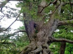 日本三名園、金沢兼六園を愛で福井の古刹永平寺へ!