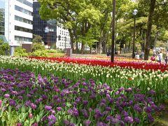 春の優雅な横浜♪ Vol.17 横浜公園♪