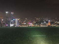 初めてのシンガポール!初めての旅行記。③