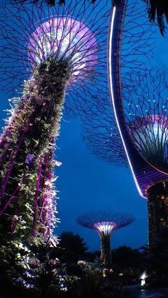 ビジネスクラスで行くアジア5か国周遊の旅-その4-