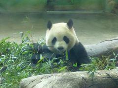 グルメ旅 in 台湾(2日目 台北動物園と饒河街観光夜市)