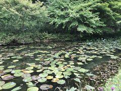 モネの池でハート♥️探し