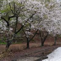 2018 GW 新潟と東北の温泉を巡る旅 【5】 秋田・乳頭温泉郷へ