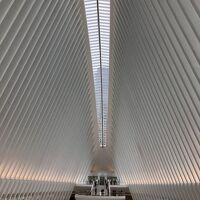 春のニューヨーク 追っかけ日記 その①移動日と、翌朝WTC跡地へ。