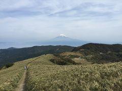 伊豆半島から富士山を眺めよう!達磨山登山と戸田港で温泉と海の幸