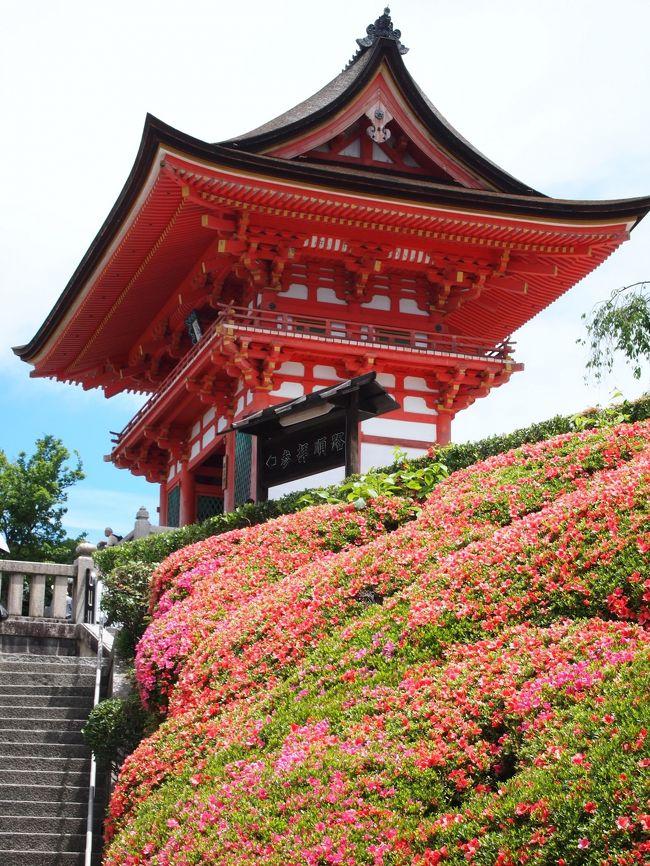 京都にて、寺社巡りをしてきました。<br /> 少し前から訳あって、学業成就・必勝祈願の寺社を参拝して御朱印を頂いております。前回京都で、金閣寺、北野天満宮、菅原院天満宮、東寺など有名どころを巡りました。今回は清水寺からスタートして、京都市内を左回りに、あまり観光客が行かない小さな場所も含めて8箇所参拝してきました。<br /> 先ずは、清水寺から八坂神社へ行きます。<br /><br />2018京都 ~学業成就、必勝祈願の神様巡り(2)<br />https://4travel.jp/travelogue/11363270<br />2018京都 ~学業成就、必勝祈願の神様巡り(3)<br />https://4travel.jp/travelogue/11363274