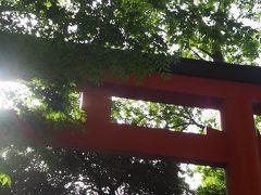 花園神社 新宿総鎮守 芸能浅間神社さんには有名人の方のお名前が一杯!