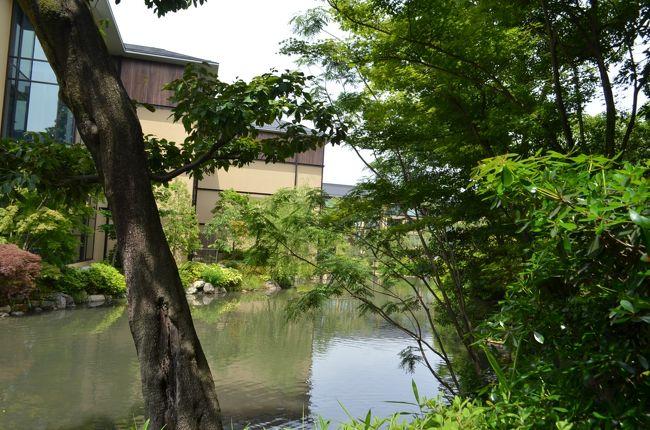 京の都で勤めて二十有四年、「観光地はいつでも行ける」という思い込みで、決まった所しか巡りません。清盛公のご長男、平の重盛公が御造成になった名園、積翠園を眺めながらの贅沢なお昼でした。お隣の京博、今は平常展もなしで庭だけの拝観でした。