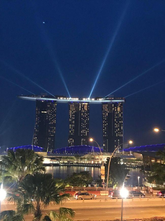 旅行大好きぷーりえです。今回初めての旅行記投稿で初めてです。そして初めてシンガポールに行ってきました。<br /><br />5/16 SQ619 関空→チャンギ シャングリラセントーサ泊<br />5/17 シャングリラセントーサ泊<br />5/18 マリーナベイサンズ泊<br />5/19-5/20 SQ618深夜 チャンギ→関空<br />のお仕事半分、遊び半分の旅です。