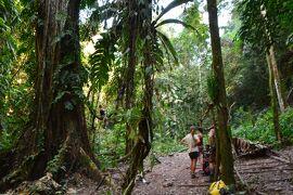 インドシナ縦横断の旅 ―ラオス ルアンナムタ 地獄のトレッキング―