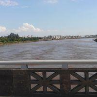 江戸川沿いを歩いてきました