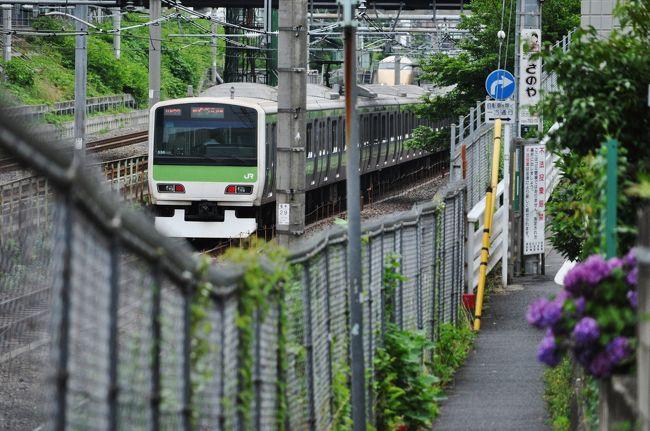 山手線を歩いて一周したのですが。<br /> 全29駅を出来るだけ短い距離で歩こうと、その事に集中し、線路を走っている電車を見る時間も、気持ちの余裕もありませんでした。<br /> それで、今度は山手線とその沿線を走る電車のビュースポットを巡ってみるかと。<br /> 改めて歩いてみようと思いました。<br /> <br /> 駒込駅から池袋駅です。
