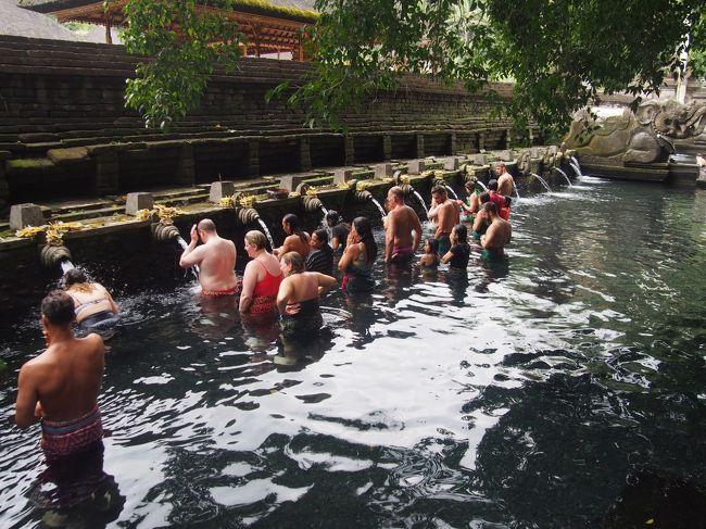 バリ島観光で、<br />テイルタエンプル寺院、キンタマーニ高原、<br />テガラランライステラス(棚田)、ゴアガジャ、<br />ケチャックダンス鑑賞などの観光をおこないました。