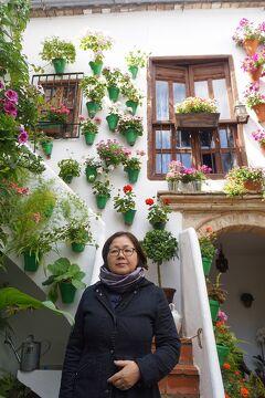 復讐と再挑戦。リベンジ・スペイン(25)サントスでトルティージャを食べてパティオ祭りとクルス・デ・マヨ巡り。フリオ・ロメロ・デ・トーレス美術館で澁澤龍彦を想う。