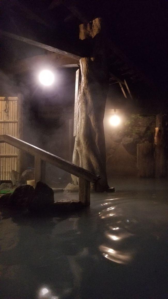 今年の4月に日帰りで加仁湯に行き、とても気に入ったため、今回は泊まりで新緑の加仁湯に行ってきました。温泉マニアの大学&amp;会社の友人と一緒でしたが、せっかくですので、あちこち近辺の温泉をはしご&amp;新緑のハイキングを楽しんできました。<br /><br />1日目は、加仁湯に行く途中で奥日光湯本温泉に立ち寄りました。何年か前に行った「源泉 ゆの香」にまた入りましたが、こちらも素晴らしいお湯でした。加仁湯への宿泊は今回初めてでしたが、夕食前、夜間、早朝とそれぞれゆっくりお湯に浸かることができ、加仁湯を満喫することが出来ました。食事も熊の刺身、鹿の刺身といった普段お目にかかることの出来ない料理に挑戦。また加仁湯まで、新緑の中、清々しい空気を吸いながらのハイキングは格別でした。トータルで大満足の1日となりました。