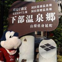 グーちゃん、下部温泉へリベンジに行く!(アルコール難民はご免なの!編)