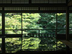 京の週末 ~瑠璃光院の青もみじ、霊源院甘露庭「蛍放生会」、植物園「はなしょうぶ園」~