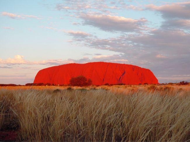 最近、JR西日本ICOCAのキャラクターにハマってましてw<br />そのキャラクターのモチーフを生で見てみたい(オーストラリアにしかいない)!思いに駆られ旅立ちましたwww<br />せっかくオーストラリアに行くんだし!ということでエアーズロックもくっ付けちゃいました w<br /><br />5月26日<br />KIX  QF34便  20時40分発→→<br /><br />5月27日<br />SYD  7時30分着<br />SYD  QF5660便(JQ機材)  10時40分発→AYQ  13時40分着<br />カタジュタ散策<br />ウルルサンセット鑑賞<br /><br />アウトバックパイオニアロッジ泊<br /><br />5月28日<br />ウルルサンライズ鑑賞<br />ウルル麓めぐり<br />AYQ  QF5661便(JQ機材)  14時15分発→SYD  17時45分着<br /><br />シドニーハーバーYHA泊<br /><br />5月29日<br />サーキュラーキー散策<br />Bills  ダーリンハースト店<br />ワールドライフシドニー動物園<br />ダーリングハーバーからハイドパークにかけてシドニー中心地散策<br />ミセスマッコリーズポイントにてサンセット鑑賞<br />vivid sydney散策<br />パンケーキオンザロック  ロックス店<br /><br />シドニーハーバーYHA泊<br /><br />5月30日<br />SYD  QF33便  10時15分発→KIX  19時10分着<br /><br />飛行機代  99880円<br />エアーズロックツアー代(ホテル込)  38880円<br />シドニーハーバーYHA代  9635円<br />合計  148395円