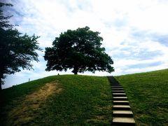 高台の「ゆずの木」眺めがいい清水ヶ丘公園