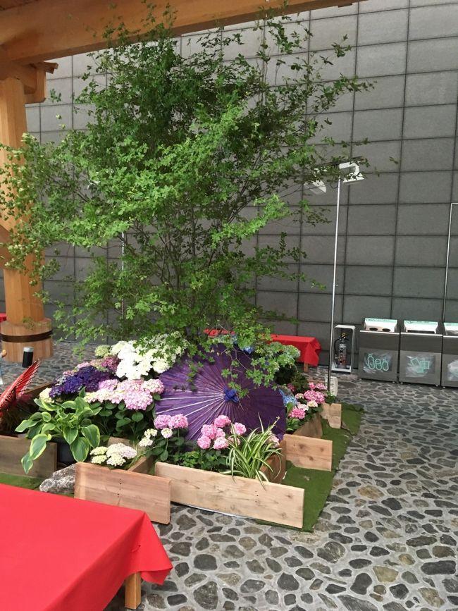 羽田神社と穴守稲荷神社へ、お参りと御朱印をいただきにいざ出発!<br />羽田の初夏を感じさせる自然と、羽田の人々の優しさに触れて…心の充電完了です~。