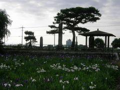 花紀行・・・②菖蒲城址公園の花しょうぶ