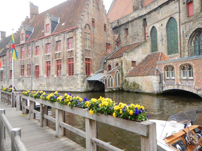 猫のいる生活を満喫しているびび家。<br />ベルギーのイーペルという街で<br />猫が街にあふれるというお祭りがあるということを知り<br />いつか行ってみたいな~と思っていました。<br />開催は3年に1度・・5月の第2日曜日。<br />5月の連休明けの休暇はなんとなくとりにくい・・ということで<br />今まではチャンスがなかった・・。<br />でも・・<br />今年2018年はびびパパがめでたく4月で定年となるアニバーサリー。<br />そして3年に1度の猫まつり開催の年。<br />びびパパのリフレッシュ休暇にびびママも便乗して<br />思いきって行ってきました。<br /><br />そしてついでに・・いやせっかくなので<br />少しゆっくりベルギー+オランダを巡ってきました。<br />一番の目的はもちろん猫まつり!<br />そして<br />+キューケンホフ公園でのチューリップ<br />+ゴッホ・フェルメール・ルーベンス・レンブラントなどの絵画鑑賞<br />+ベルギービール・ワッフル・チョコレート<br />などなど+@も盛りだくさん。<br /><br />仙台から成田乗継でブリュッセルまでANA便往復。<br />ベルギー・オランダ内は電車での移動で車窓も満喫。<br />ベルギー・オランダ共に拠点を決めてそこを起点に行動。<br />ベルギーの古都ブルージュではオーベルジュ<br />オランダではユトレヒトのアパートメントホテルに宿泊という<br />新しい体験も。<br /><br />ビール天国+食べ物も美味しくて<br />重いスーツケースを抱えての石畳や駅の階段など<br />四苦八苦しながらも<br />ベルギーの方の陽気さと<br />一見素気なさそうでいてとても親切なオランダの方に助けられ<br />今回もとっても思い出深い旅行になりました。<br /><br />4日目は美しい街‥ブルージュでのんびり街歩きを楽しみました。<br /><br /><br />旅行の概要及び手配は下記の通りです。<br /><br />5/11(金)<br />仙台空港発8:00 ANA NH3232便<br />成田空港発10:55 ANA231便<br />ブリュッセル着 15:40<br /><br />ブリュッセルーデンハーグへ電車移動  デンハーグ泊<br />Hotel - Babylon Den Haag<br />ホテル - バビロン デン ハーグ泊<br /><br />5/12(金)<br />キューケンホフ公園+マウリッツハイス美術館<br />その後電車でブルージュ移動       ブルージュ泊<br />Hotel Duc De Bourgogne<br />オテル デュ ドゥ ブルゴーニュ  3泊<br /><br />5/13(日)<br />ブルージュから日帰りでイーペル猫まつり  ブルージュ泊<br /><br />5/14(月)<br />ブルージュ                   ブルージュ泊<br /><br />5/15(火)<br />ブルージューアントワープ経由ーユトレヒト     ユトレヒト泊<br /><br />ホテル:ホテル 26(アパートメントホテル)  4泊<br />     <br />5/16(水)<br />ユトレヒトから電車でアムステルダムへ日帰り<br />ゴッホ美術館・新国立美術館     ユトレヒト泊<br /><br />5/17(木)  <br />ユトレヒトからバスでキンデルダイクへ日帰り<br />                  ユトレヒト泊<br /><br />5/18(金)  <br />ユトレヒトから電車+バスでクレラーミュラー美術館へ<br />その後アムステルダムへ移動猫博物館 ユトレヒト泊<br /><br />5/19(土)<br />ユトレヒトからブリュッセルへ電車で移動<br />ロッテルダムからタリス乗車       ブリュッセル泊<br /><br />ホテル:イビスブリュッセルオフグランプラス      <br /><br />5/20(日)<br />ブリュッセル発21:10 ANA232便<br /><br />5月21日(月)<br />成田空港着15:10<br />成田空港発18:50 ANA3235便<br />仙台空港着20:10<br />    <br />航空券手配:仙台ーブリュッセル <br />      ANA HPで2017年6月に予約<br /><br />      諸税込 111,280円/1人<br />      マイル 8,971マイ