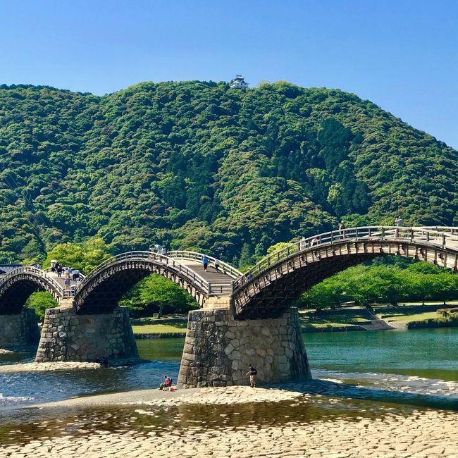 広島で泊まりの仕事が決まり、病み上がり後初の飛行機~!と張り切って早い便をおさえたら、到着後、ほぼ半日の余裕があることが判明(笑)。<br /> お天気も良いしどこに行こうか、バスセンターに向かう途中でGoogle くんと相談し、まさかの県またぎに決定。「岩国に立派な橋がある」くらいしか知らなかったので、まだ体力も戻りきっていないし、ちゃちゃっと橋往復して帰って来よう!と気軽に出かけましたが、思っていたのとかなり違う小旅行になりました。