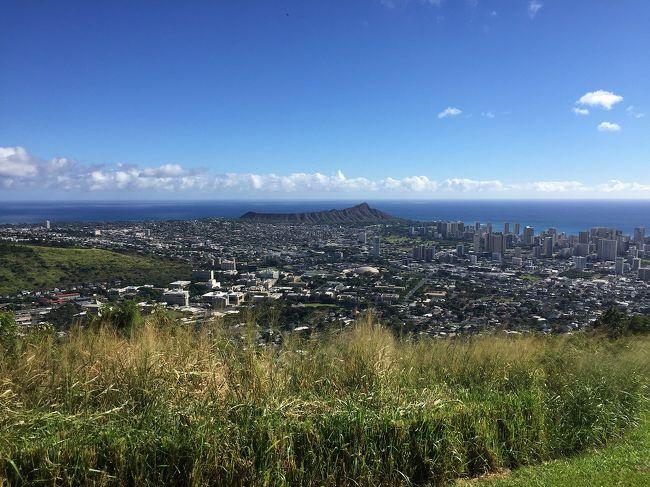 2015年7月以来、1年4か月ぶりのハワイです。<br />今年は二女夫婦の結婚式ということもあり、とても思い出に残るハワイでした。<br />長女も初めてのハワイで、とても楽しめたようです。<br /><br />ハワイ4日目。<br />KCCファーマスマーケットへ行きました。<br />前回はのんびり見ることができなかったので、ゆっくり見て回りました。<br /><br />遅くなってしまいましたが、投稿させていただきます。<br />