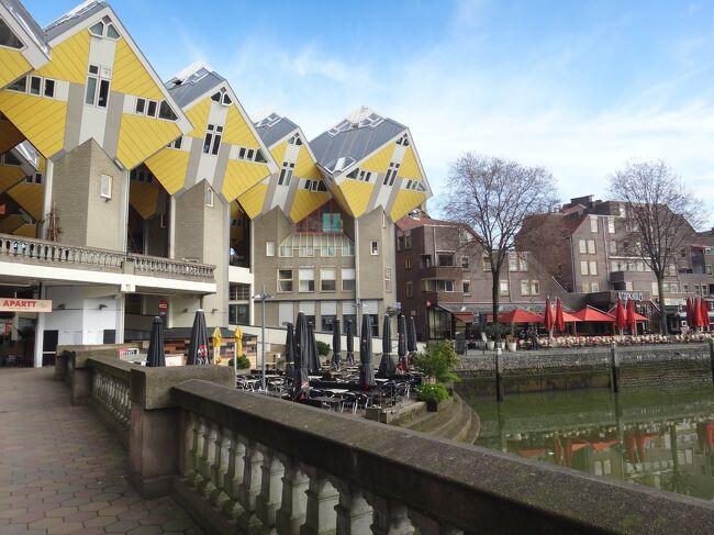 オランダ・ベルギー再訪の旅2017初春-<13>朝のキューブハウス&ホーフヴリートへお出掛け