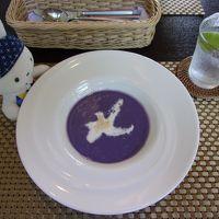 「てーげー」に巡ろう!青い翼で行く沖縄石垣島の旅