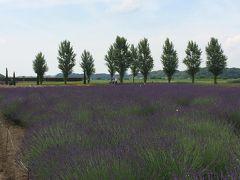 2018年も佐倉市に青紫色のラベンダー畑と武家屋敷を見に行く