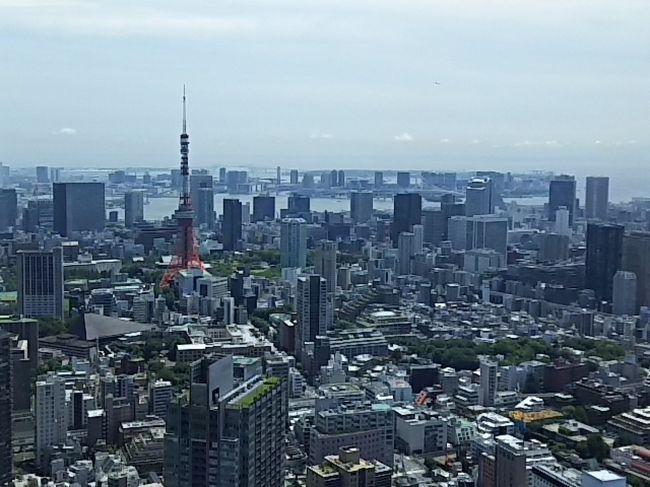 大好きなリッツカールトン東京。<br />オープンの翌年くらいからお邪魔してます。<br />バリ島に行くようになって回数は減りましたが、一番好きな場所であることは変わりません。<br />今年初めての滞在です。