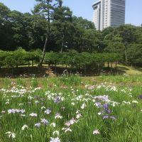 2018年5月 都立9庭園を廻る� 小石川後楽園