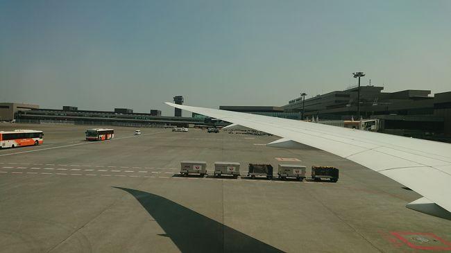 今回は往路JAL、復路マレーシア航空でペナン島に行ってきました。<br />ゆっくりと休む予定でいったのですが、行き飛行機整備で3時間遅れで出発、ペナンに着いたら荷物が来ていないと翌日まで落ち着かない旅の始まりでした。その後はいつものペナンでゆっくり過ごせました。