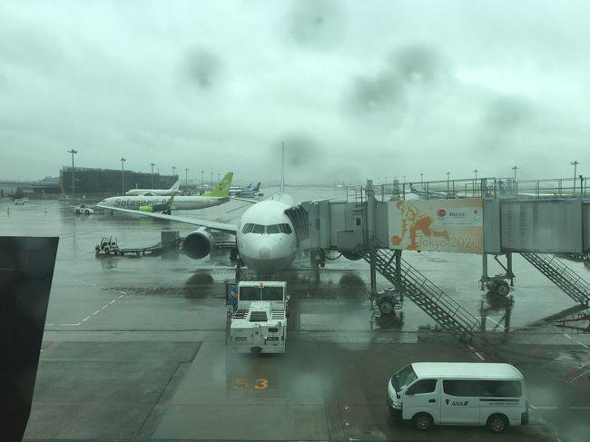 台風の影響で梅雨前線が刺激され雨が降る中、飛行機で小松へ。<br />一瞬、北陸新幹線のグランクラスで行ってみようかと思ったが、値段が高いので断念。でも土曜日に新幹線で殺傷事件が起こった後なので、新幹線にしないで良かったと思った。<br />安全性より利便性を優先する新幹線には、正直余り乗りたくない。今後もっと大きな事件が起こる気がしてならない。誰が何を持って乗っているか分からない電車が300kmで行き交っていると思うと、とても恐ろしい…<br /><br />私の不満はともかく、亡くなられた方のご冥福をお祈りいたします。