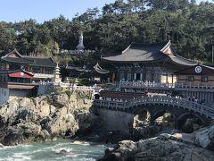 週末ひまなら釜山へ行こう!
