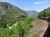 ノルウェーのフィヨルドを見に行きました(フロム鉄道)