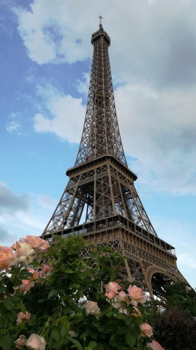 (6/15)<br />写真とコメントを追記<br />また、来年も行こう。<br />------<br />French open観戦を主目的として、7泊ほどParisに旅行しました。テニスが好きでグランドスラムを観ようと考えたときに観光もセットでどこが良いかと思案して(メルボルン、ニューヨーク、ロンドン、そしてパリ)パリにしました。<br />結果、最高でした。<br />観るものすべてが、絵になります。実際は絵にするのは難しい(笑)ので、写真を取りまくりました。<br />毎日その写真を見てため息ついてます。。。<br />セーヌ川を遊覧するBATO busはオススメです。<br />4travelのWi-Fiも快適でした。全く問題ありませんでした。本当に、楽しい一週間でした。ウォシュレットが無いことと、RER(パリの国鉄)の治安が悪いことを除いては。。。<br /><br />また、来年も行くと思います。<br />