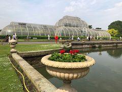 キュー王立植物園へ~2018年5月