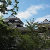 松山、高知をぶらぶら旅行です