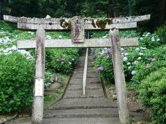 岡山☆吉備津神社の紫陽花