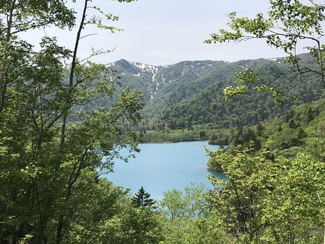 初夏の北海道ドライブ旅行③(終)最終日も北海道の自然とグルメを満喫、宿泊はANAクラウンプラザホテル千歳