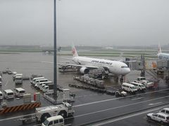 梅雨明け?の沖縄へ(1)JALファーストクラスで那覇へ向かう空の上から