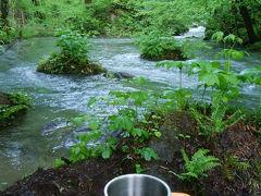 青森新緑の奥入瀬渓流:二日目 奥入瀬散策とグリランド
