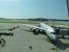 A350 ベトナム航空    まさかの振替(泣) ソウルー(ハノイ経由)ークアラルンプール 出発&搭乗編