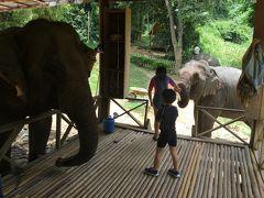 いろんな魅力いっぱいのルアンパバーン、家族3泊の旅。その2:象とのふれあい編