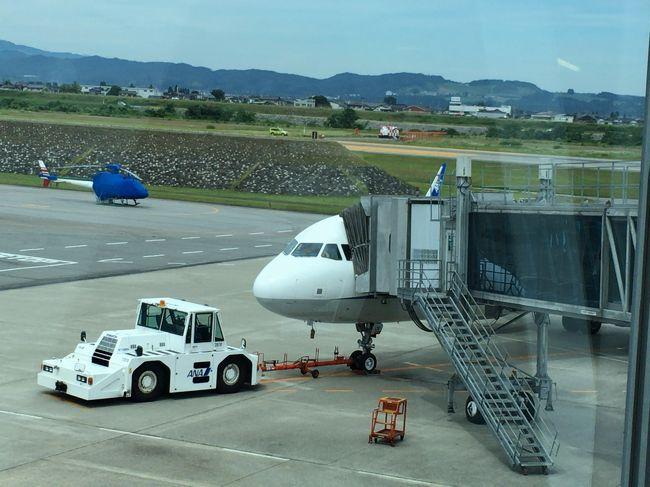 2018年6月関東日帰り旅行1(A321neoで羽田空港へ)